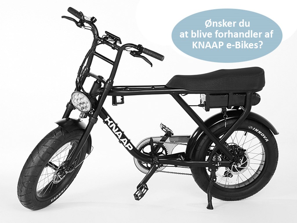 Knaap Electric Bike AMS